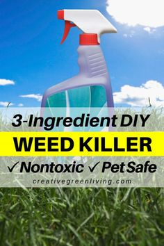 How to Kill Weeds Naturally - a DIY weed killer that works - Garden Care, Garden Design and Gardening Supplies Kill Weeds With Vinegar, Organic Gardening, Gardening Tips, Rock Driveway, Kill Weeds Naturally, How To Kill Grass, Killing Weeds, Weed Killer, Garden Types