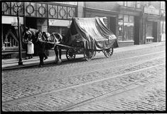 Sept 1937.  A horse drawn cart outside 184 Folds Road.