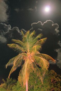 ✮ Full Moon in the Caribbean - Awesome Pic!  Roupen Baker