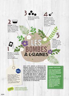 Atelier du dimanche : les bombes à graines, armes de verdissement massif ! #CULTURE(S)BIO