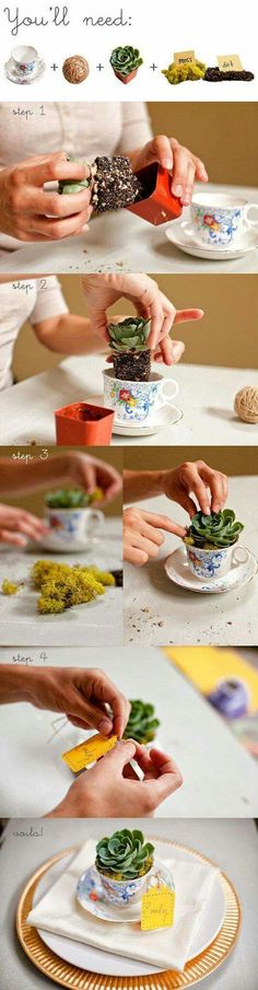 make table settings using a succulent plant and small vintage tea cup DIY plante grasse + tasse + mousse / tea cup flower- this would be cute to put in your garden Cacti And Succulents, Planting Succulents, Planting Flowers, Deco Nature, Ideias Diy, Deco Floral, Cactus Y Suculentas, Container Gardening, Indoor Plants