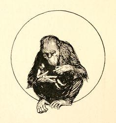 Staynes Illustrations: Gulliver's Voyages to Lilliput and Brobdingnag. Gulliver's Travels, Illustrators, Darth Vader, Tattoos, Inspiration, Fictional Characters, Biblical Inspiration, Tatuajes, Tattoo