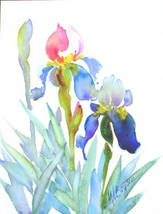 http://www.maboysen.com/images/Florals/Pink-purple-iris-lg.jpg