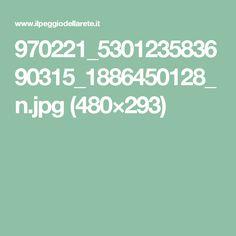 970221_530123583690315_1886450128_n.jpg (480×293)