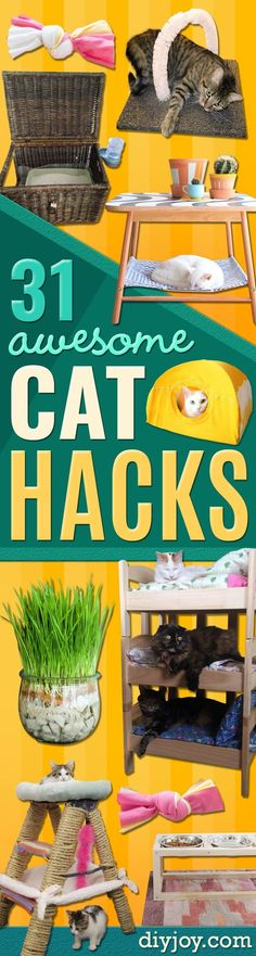DIY Cat Hacks - Tips and Tricks Ideas for Cat Beds and Toys, Homemade Remedies for Fleas and Scratching - Do It Yourself Cat Treat Recips, Food and Gear for Your Pet - Cool Gifts for Cats diyjoy.com/...