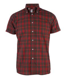 Brutus Trimfit – in skinhead we trust Button Collar Shirt, Collar Shirts, Skinhead Men, Fred Perry Polo, Vintage Style, Vintage Fashion, We Wear, How To Wear, Sharp Dressed Man