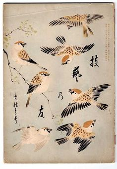 thewoodbetween:  Kacho Fugetsu - Japanese design book cover mid-19th century, Meiji period, lithograph.