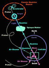 Cosmic String Evidence