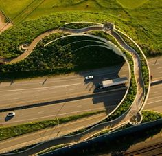 Earth bridges built for animals to safely cross highways