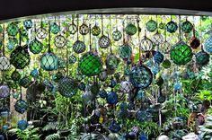 Image detail for -this amazing collection of glass fishing floats belongs to patrick i ...
