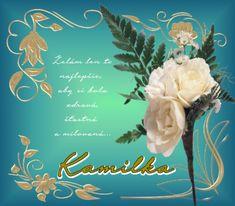 18.7 Kamilka Lens, Frame, Movies, Movie Posters, Picture Frame, Films, Film Poster, Klance, Cinema