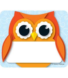 Colorful Owl Name Tags | Classroom décor from Carson-Dellosa