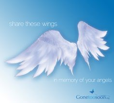 Share these wings, in memory of your angels