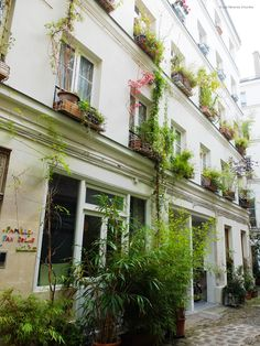 Cour de l'Ours 11e - Paris bucolique #10 : en passant par la rue du Faubourg St Antoine | Les flâneries d'Aurélie