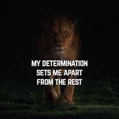 56 Short Inspirational Quotes That Will Inspire You Fast 22 Short Inspirational Quotes, Motivational Quotes, Lioness Quotes, Warrior Quotes, True Quotes, Qoutes, 2pac Quotes, Fast Quotes, Quotable Quotes