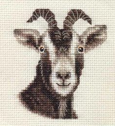 TOGGENBURG GOAT, KID ~ Full counted cross stitch kit with all materials | eBay