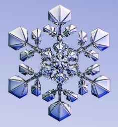 Designer Snowflakes -  IMG_1794-7-A1a.jpg (1024×1096)