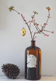winter flowering viburnum in a vintage bottle #christmas # winter www.littlegreenshed.blogspot.co.uk