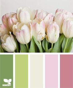 Tulip Tones by Design Seeds Colour Pallette, Color Palate, Colour Schemes, Color Combos, Color Patterns, Design Seeds, Color Swatches, Color Of Life, Color Theory