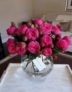 Maison Farola Garden Roses