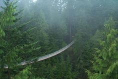 Capilano Suspension Bridge Park - 2 of 5
