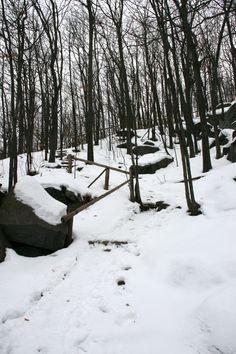 Sentier Panorama, Mont Saint-Grégoire, Québec, décembre 2016 Saint Grégoire, Panorama, Snow, Outdoor, Mountains, Pathways, Outdoors, Outdoor Games, The Great Outdoors