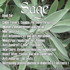 Sage for health