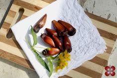 Salada de pinhão.. *--*