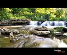 17 Beautiful Hiking Trails in Illinois You Won't Forget Hiking Places, Places To Travel, Camping In Illinois, Mini Vacation, Vacation Ideas, Best Places To Live, Hiking Tips, Camping World, Future Travel