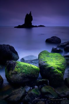 Mystic night... The rocks of Elnar on the Snaefelsness Peninsula, Iceland