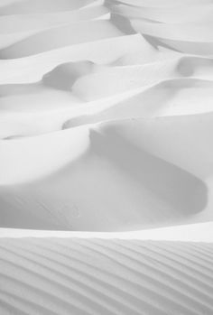 White White White! White sand, white desert, sand dunes, whipped cream, simplicity, love of white, freedom, adventure, travel, white moss