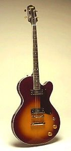 2 pick-up Rosetta electric tenor guitar