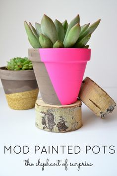 The Elephant of Surprise: Modern Painted Pots Colourful twist for old pots. Easy DIY interior and garden project Hot Pads, Halloween Snacks, Halloween Halloween, Cactus Y Suculentas, Painted Pots, Terracotta Pots, Clay Pots, Summer Crafts, Potted Plants