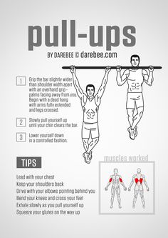 Pull-Ups Guide
