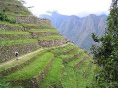 Las complejas terrazas de los Incas (Perú)    Los Incas desarrollaron el sistema de terrazas conocido como andenes, construidas en las laderas de las montañas andinas en zonas de valles estrechos y profundos. Construidos antes de la llegada del europeo a América, aún continúan utilizándose en diversos puntos, sobre todo de Perú.