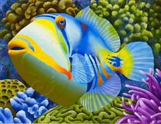 Art cards notecards pack of 5 blank inside tropical Tropical Art, Ocean Creatures, Beautiful Fish, Colorful Fish, Fish Art, Aquarium Fish, Freshwater Aquarium, Salt Water Fish, Art Plastique