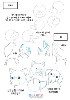 61 Ideas Drawing Tutorial Dog Art For 2019 Animal Sketches, Animal Drawings, Cool Drawings, Art Sketches, Drawing Animals, Dog Drawing Tutorial, Sketches Tutorial, Drawing Practice, Drawing Lessons