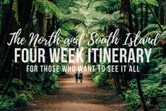 A 4 to 6 week road trip itinerary around both islands of New Zealand that highlights the best outdoor activities, the best photography spots and the best route to take to optimise your time in New Zealand. New Zealand Itinerary, New Zealand Travel Guide, Driving In New Zealand, New Zealand South Island, Ultimate Travel, Outdoor Activities, Amazing Photography, Road Trip, Places To Visit