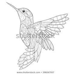 Bird drawings - Hummingbird Coloring Pages Bird Coloring Pages, Printable Adult Coloring Pages, Mandala Coloring Pages, Coloring Books, Kids Coloring, Coloring Sheets, Adult Colouring Pages, Coloring Pages For Adults, Hummingbird Colors
