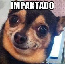 Best ideas for memes funny mexicanos mothers Cute Memes, Dankest Memes, Funny Quotes, Funny Memes, Hilarious, Memes Amor, It's Funny, Funny Animal Pictures, Funny Images