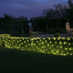 10 Outdoor Lighting Tips for Your Home – Voyage Afield Stairway Lighting, Pathway Lighting, Tree Lighting, Landscape Lighting, Lighting Ideas, Net Lights, Xmas Lights, Outdoor Party Lighting, Garden Netting