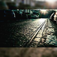 Szyny tramwajowe i bruk na Lwowskiej przy placu Politechniki