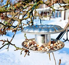 DIY: an old cake mould turned into bird feeder