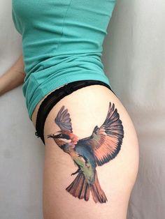 A birds