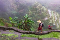 Igorot tribal woman, Rice Terraces of Philippine Cordilleras in background, Banaue, Ifugao Province, Philippines Constitution Of The Philippines, Banaue Rice Terraces, Spain Culture, Philippines Culture, Filipino Culture, Baguio, Palm Trees, Survival, Around The Worlds
