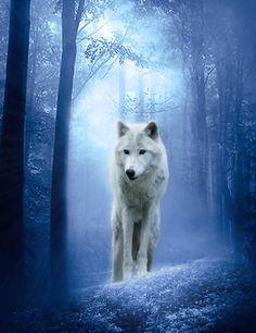 Thw white wolf
