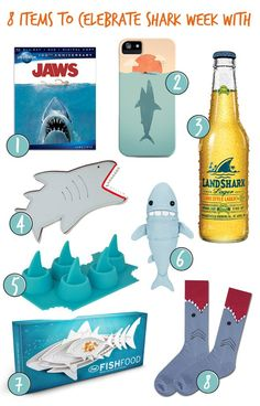 8 Great Gifts for Shark Week! This is all I need for a whole week! (except for the beer) Save The Sharks, Shark Bait, Great White Shark, Marine Biology, Shark Week, Ocean Life, Summer Fun, Fur Babies, Great Gifts