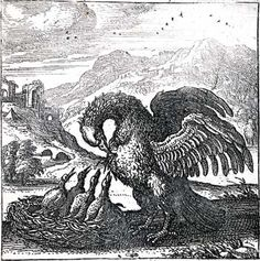 pelican in her piety - Google Search