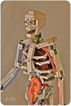 Lego anatomy. So very cool.