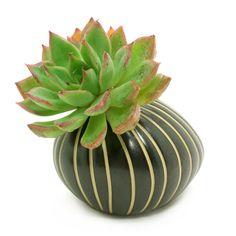 Porcelain Ceramic Flower Pots / Planter Pots: Black with White Stripes Pebble, Cactus, Succulents, Pottery, Vase, Housewarming, Home Décor by BloomyLifePottery on Etsy